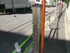 Hinoki Cypress Rise, top
