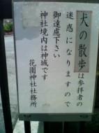 No shrine walks