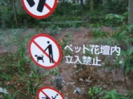 No Dogs in Flowers