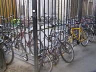 locked bicycle rack