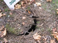 Ajar manhole cover