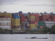 Duwamish containers