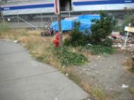 Homeless structure near old sidewalk
