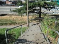 Yesler Steps