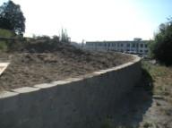 Yesler steps planting