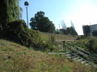 SHA field