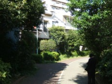 Bend in Kameido Greenway Park