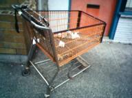 Orange shopping cart