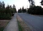South Bellevue