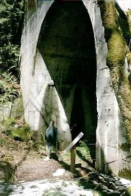 Iron Goat Trail